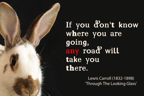 rabbit with quote that if you don't know where you are going, any road will take you there.