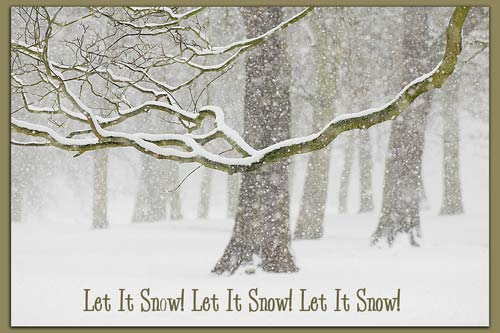 let it snow questions A preschool winter theme that includes preschool lesson plans let the snow theme planning ask many questions while cooking with your children to encourage.