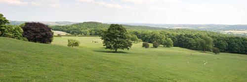 South Yorkshire Landscape