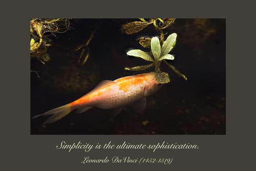 Simplicity - A Quillcards Quotation Ecard
