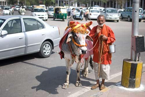 Pilgrim In Delhi