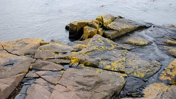 rocks on the coast south of Edinburgh