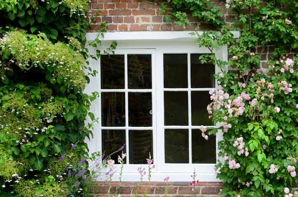 Blooms At The Window - Jane Austen In Chawton