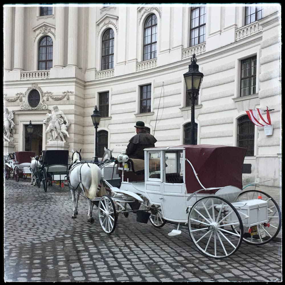 fiaker horse-drawn carriage on the michaelerplatz in Vienna